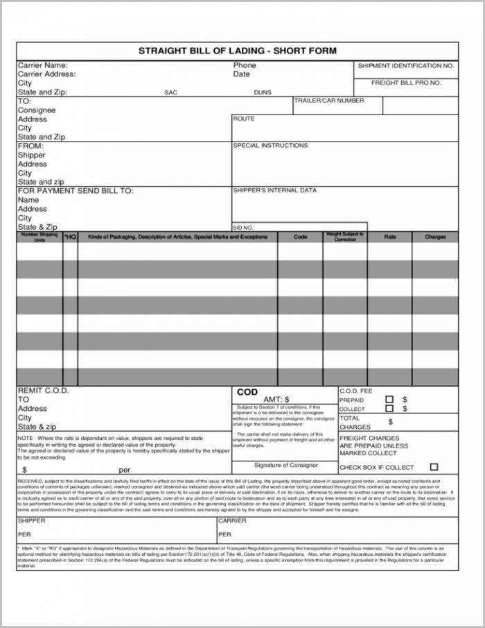 Bill Of Lading Format Pdf