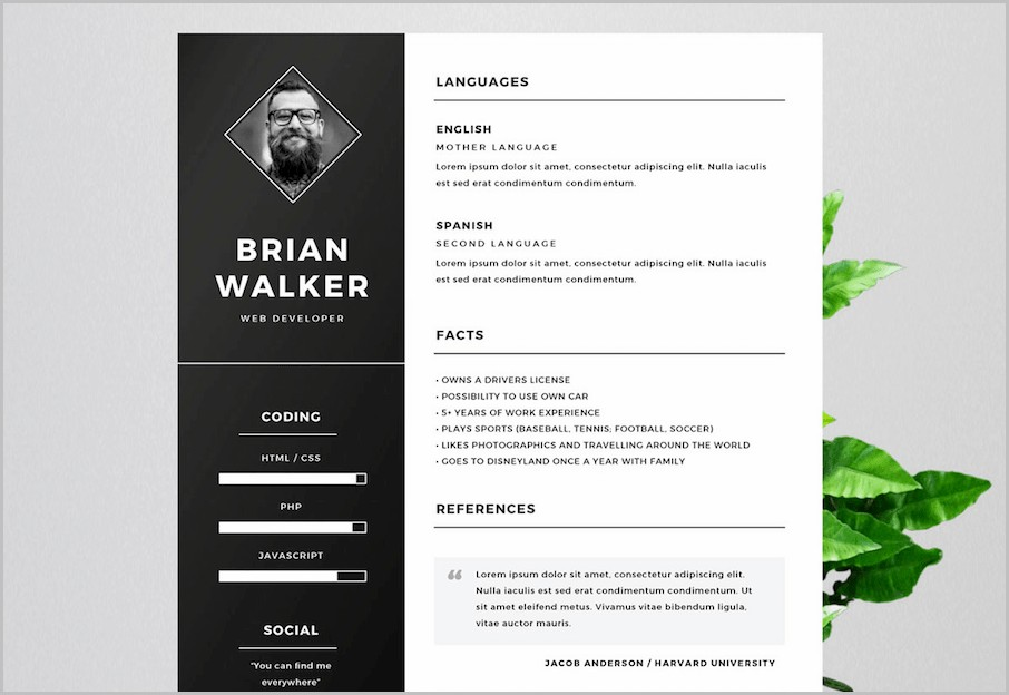 Free Unique Resume Templates For Word