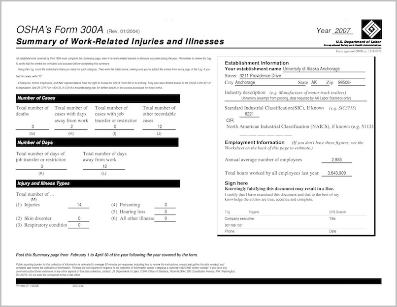 Instructions For Osha Form 300ab