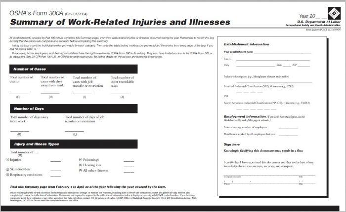 Osha 300a Form Posting Requirements
