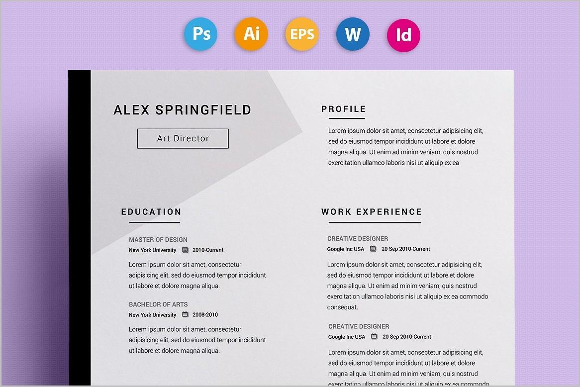 Unique Resume Templates For Microsoft Word
