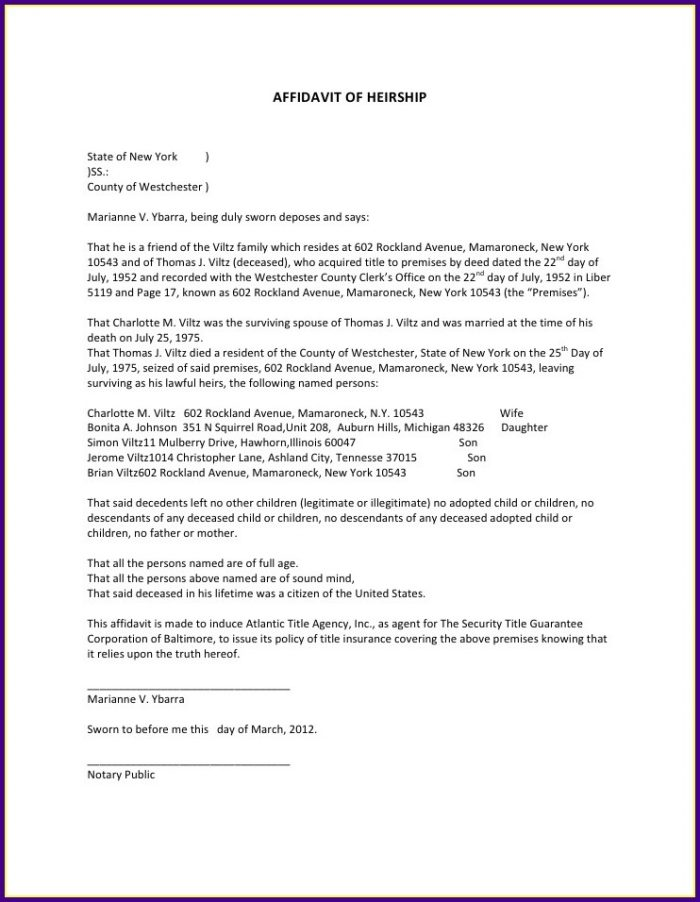 Affidavit Of Loss Template Word