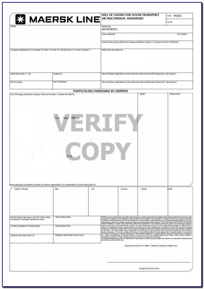 Bill Of Lading No Format
