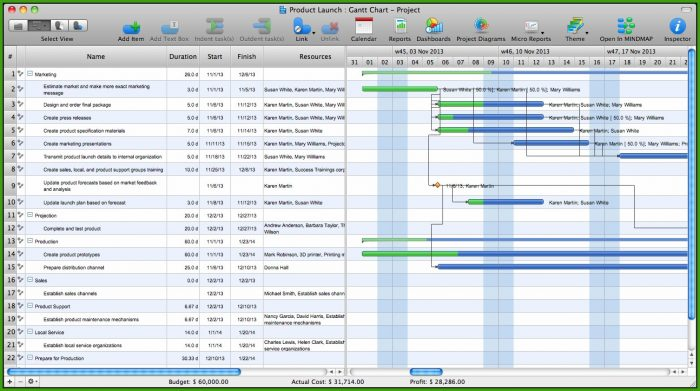 Gantt Chart Template Mac