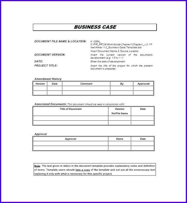 New Product Business Case Template Ppt