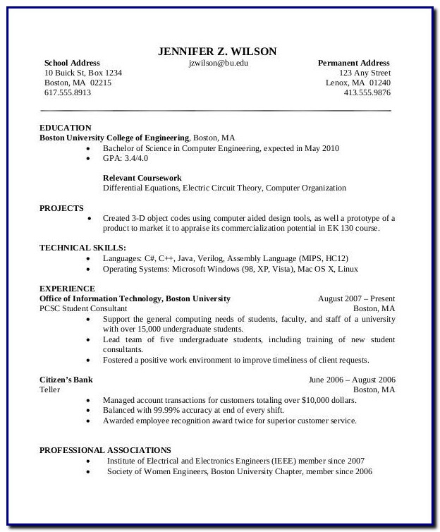 Professional Cv Template Download Pdf
