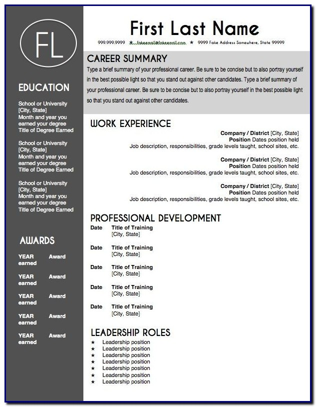 Professional Cv Template Editable