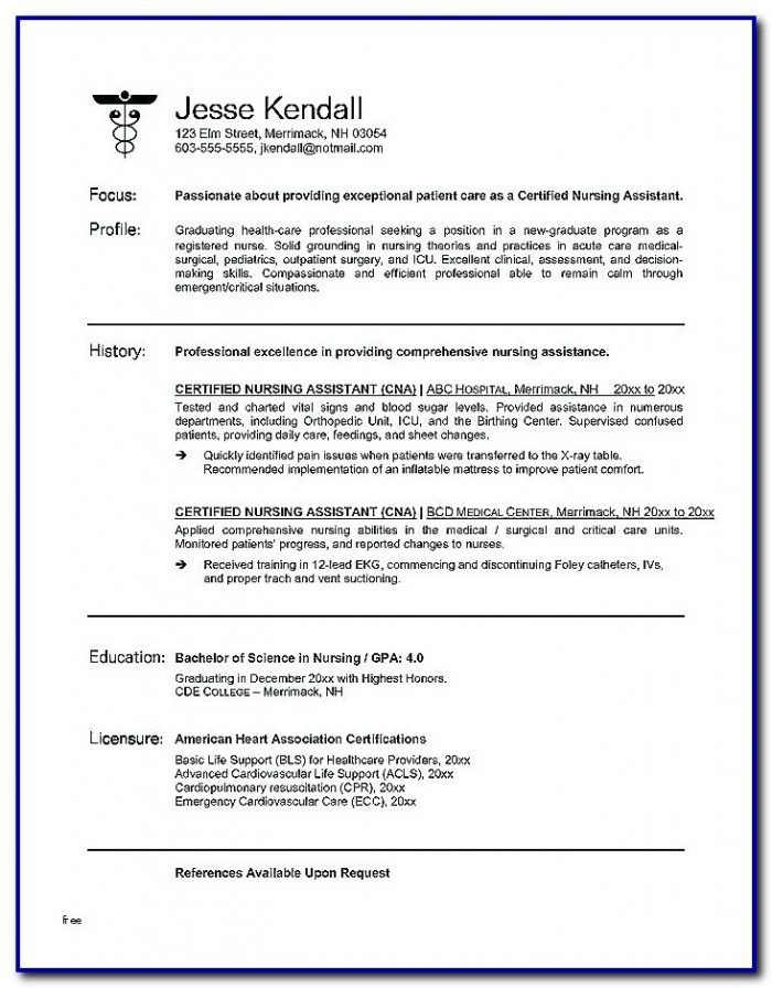Rn Resume Template Word