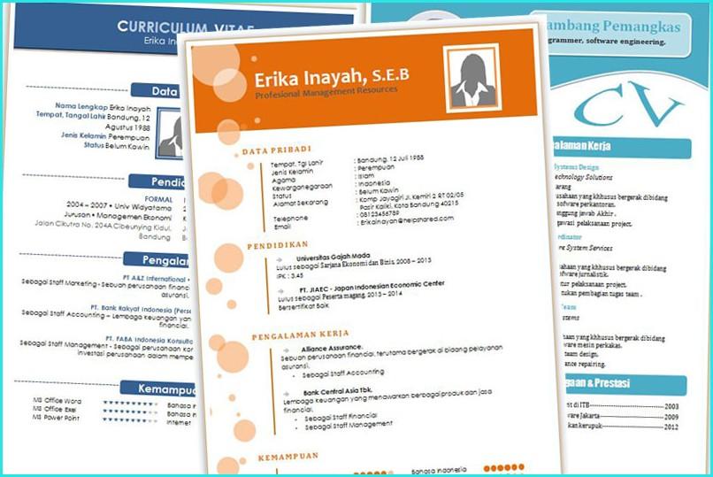 Download Template Resume Menarik