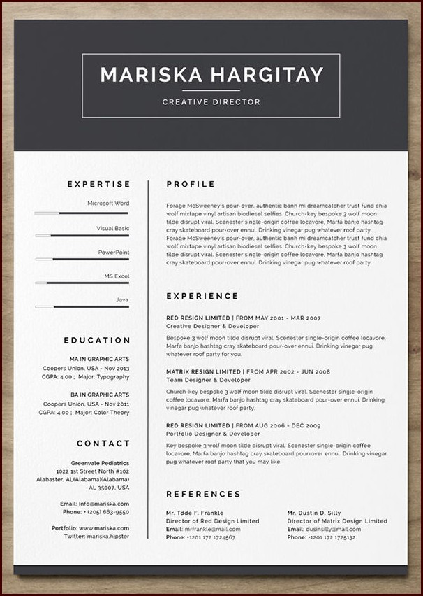 free resume template with photo insert templates