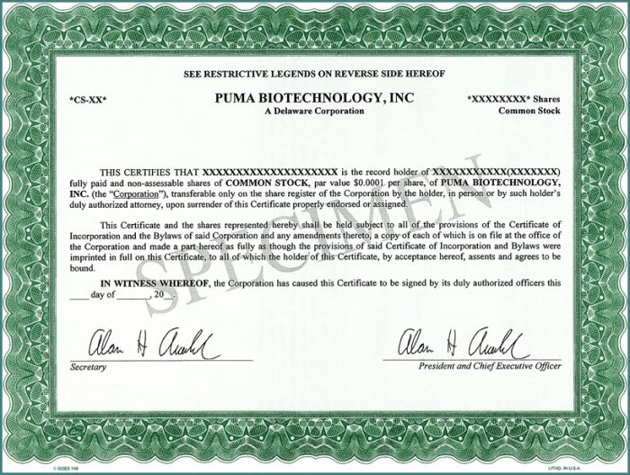 S Corporation Stock Certificate Template