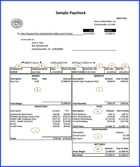 Pay Stub Template Free Canada
