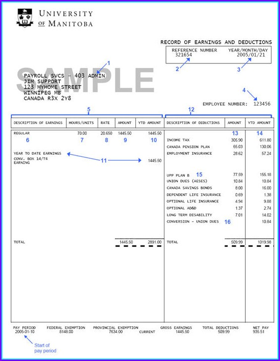 Pay Stub Template Pdf Download