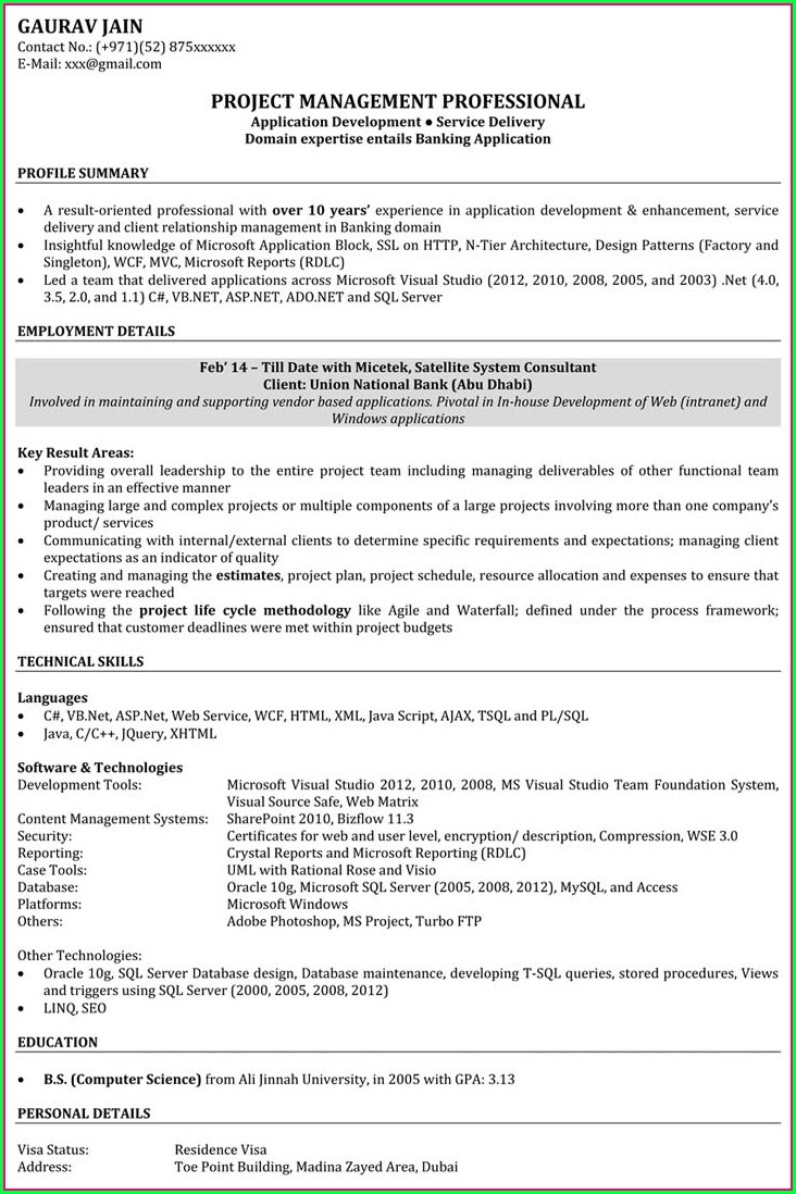 Software Resume Template