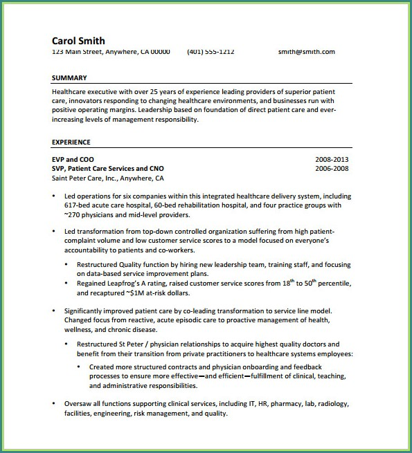 Downloadable Executive Resume Director Resume Template Word