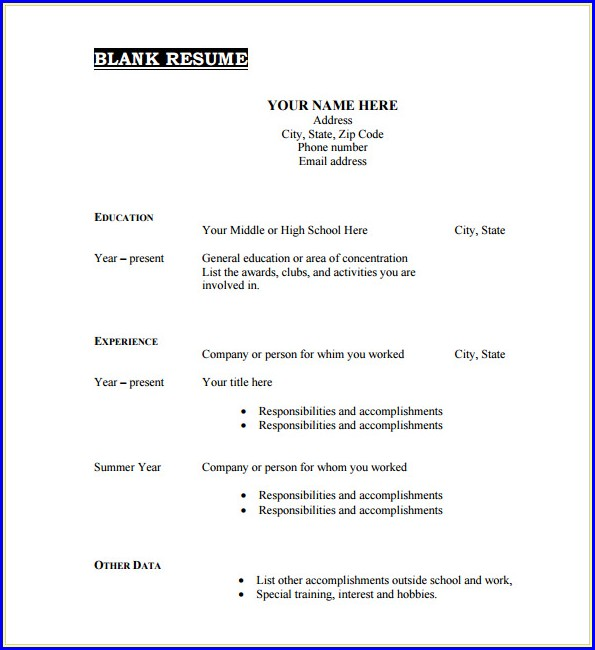 Job Application Resume Template Blank Form