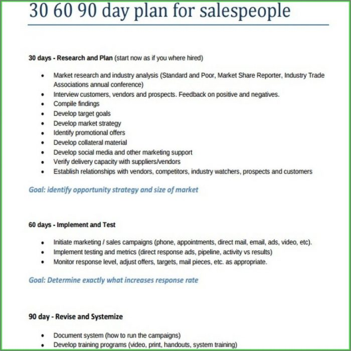 30 60 90 Sales Plan Template Free