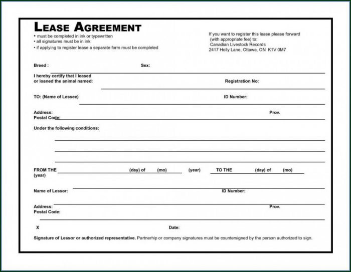 Blank Commercial Lease Template