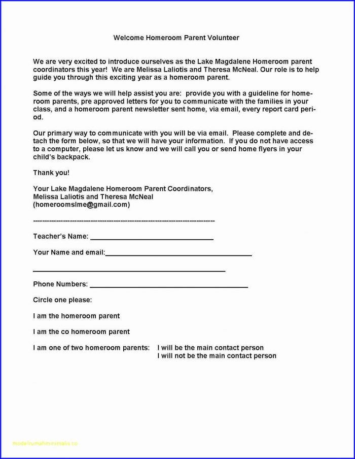 Cleaning Business Contract Template