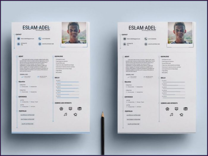 Cv Resume Template Free Download