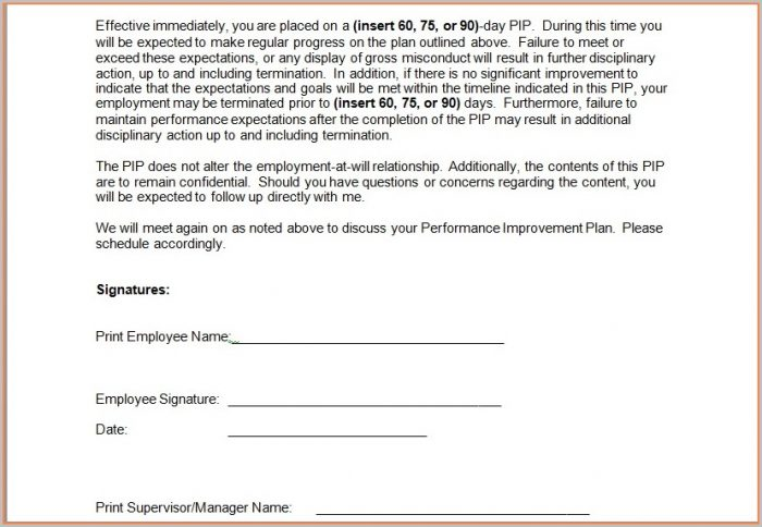 Document Employee Performance Improvement Plan Template Excel