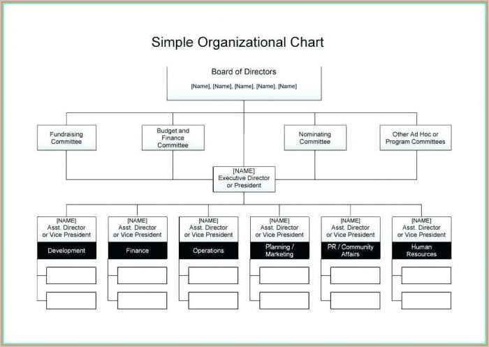 Editable Blank Flow Chart Template For Word Free Download