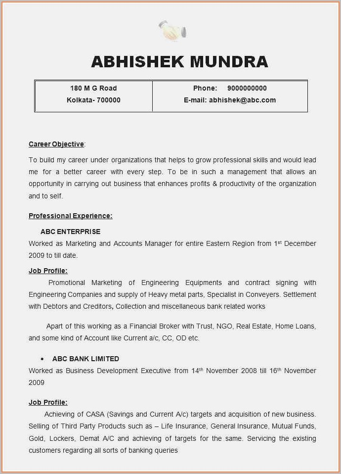 Free Executive Resume Template 2019