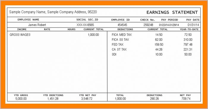 Printable 1099 Pay Stub Template Pdf