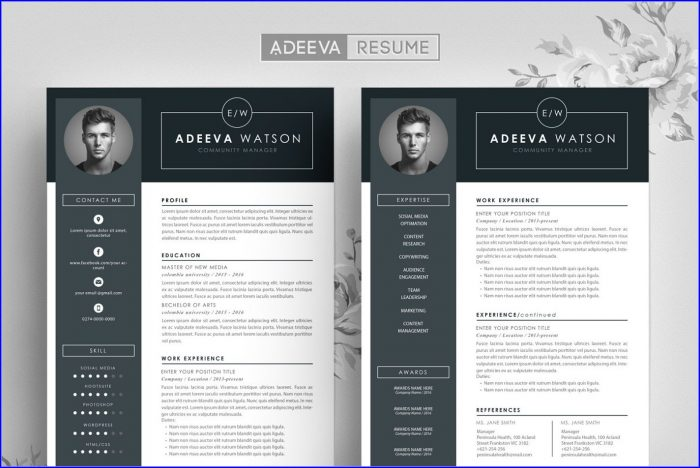Professional Creative Resume Design Templates