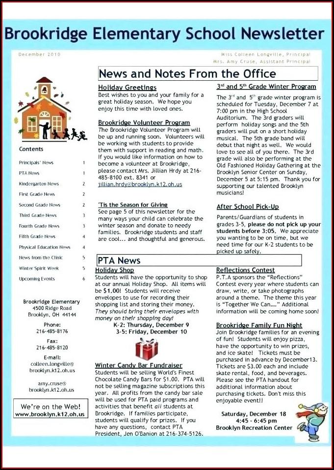 Publisher Winter Newsletter Template