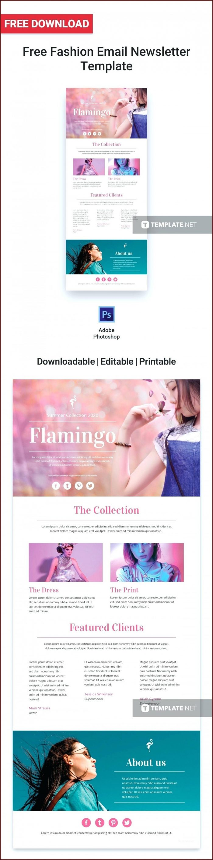 Responsive Email Newsletter Templates Free Download
