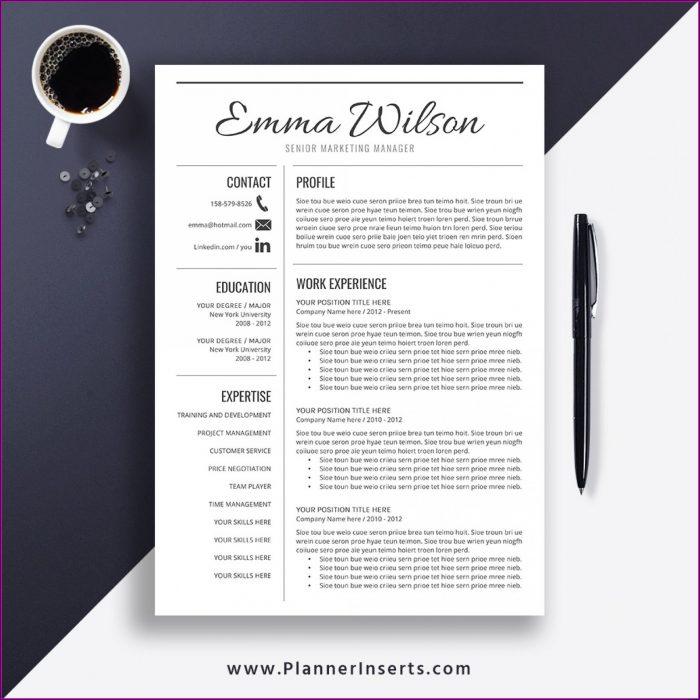 Simple Resume Template Download In Ms Word