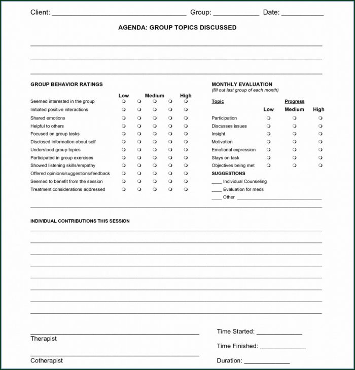 Social Work Counseling Case Notes Template