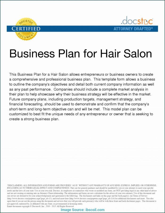 Spa Business Plan Template Pdf