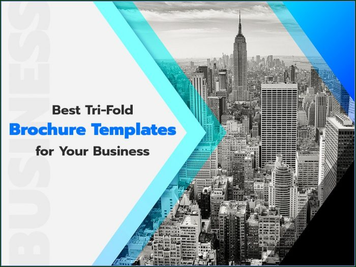 Tri Fold Business Brochure Templates